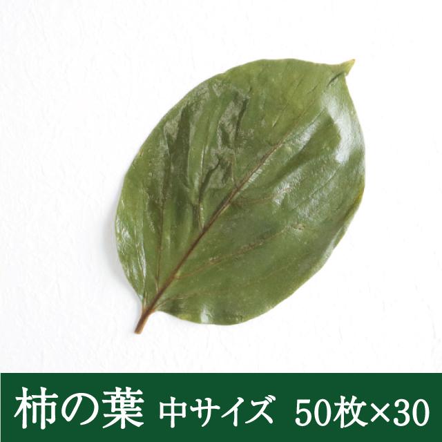 柿の葉中50枚×30