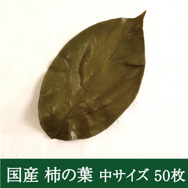 国産柿の葉 アイコン