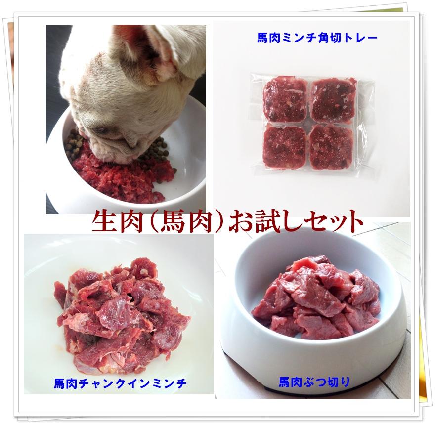 【送料無料】ペット用馬肉 生食お試セット3品 2021 ◎初回限定 /ペットフード