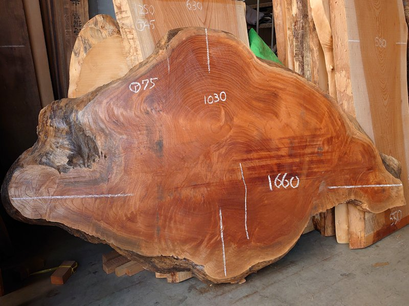 K-669 欅ケヤキ 国産 天然耳付き板 1780×1090 天然乾燥材