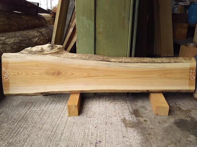 K-515 欅ケヤキ 国産 天然耳付き板 1540×300 天然乾燥材