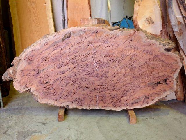 K-626 欅ケヤキ 国産 丸形天然耳付き板 1550×720 天然乾燥材
