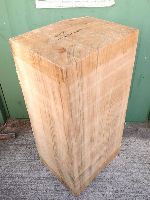 KS-573 楠クスノキ 彫刻用材 630×310×255