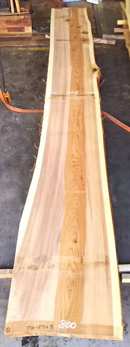 S-120 杉 天然耳付き節有りカウンター 5700×700