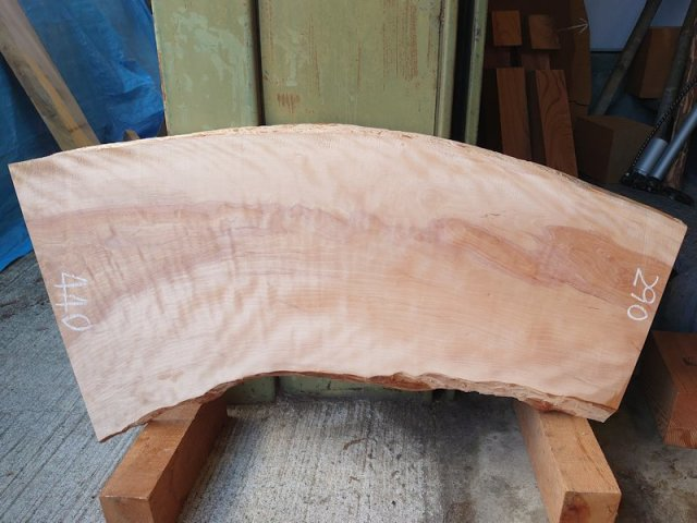 SA-205 樺桜(カバサクラ) 国産 天然耳付き板 1000×450 天然乾燥材 表面加工済