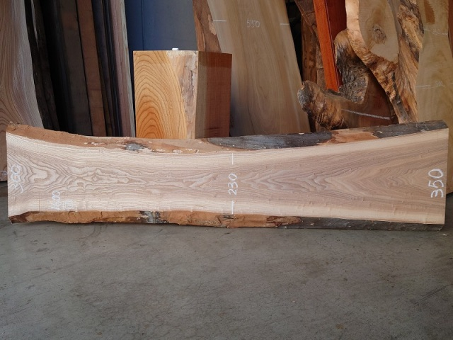 TM-217 タモ 天然耳付き板 1600×400  天然乾燥材