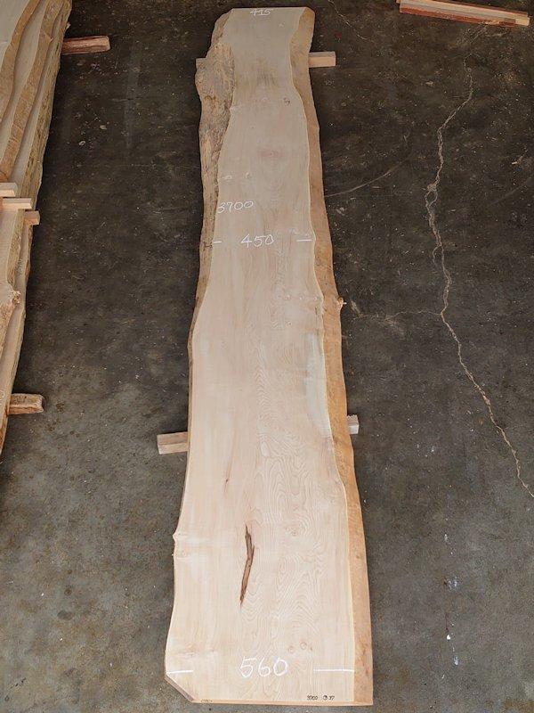 TT-206 栃トチノキ 国産 天然耳付き板 3700×600 天然乾燥材
