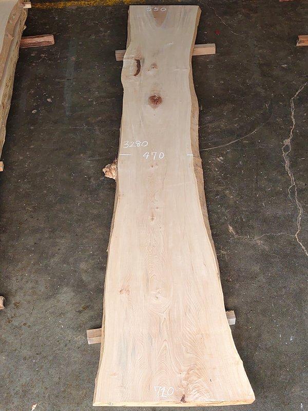TT-207 栃トチノキ 国産 天然耳付き板 3280×650 天然乾燥材
