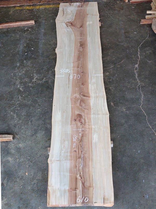 TT-210 栃トチノキ 国産 天然耳付き板 3680×700 天然乾燥材