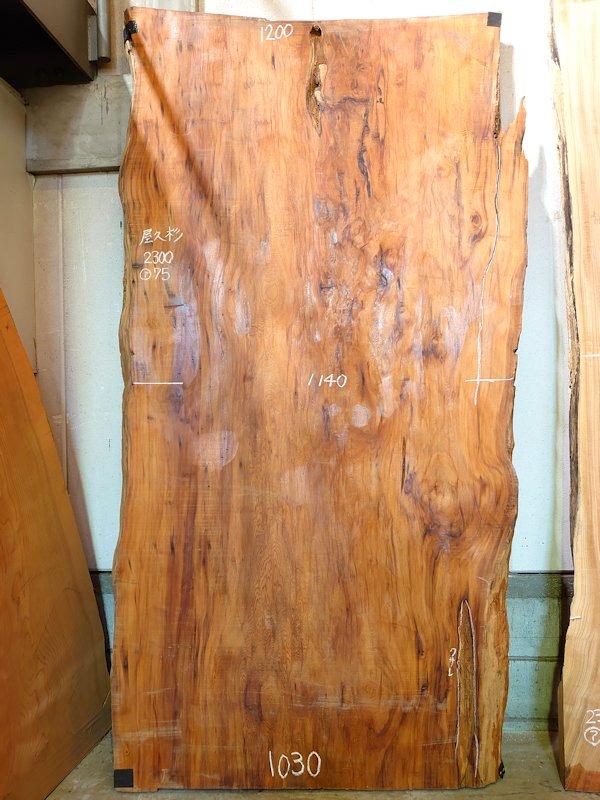 YS-201 屋久杉ヤクスギ 国産 天然耳付き板 2300×1200 天然乾燥材