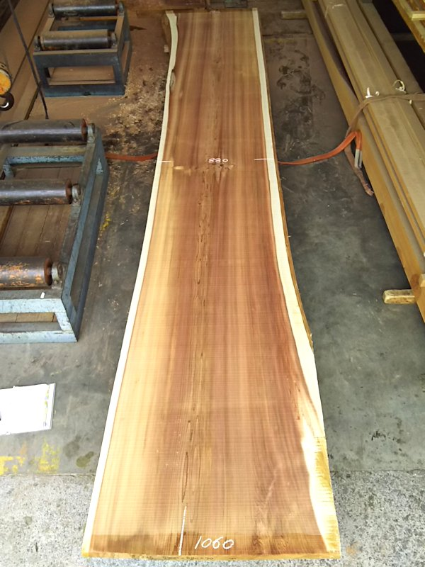 S-225 杉スギすぎ 国産 天然耳付き板 5200×950 天然乾燥材