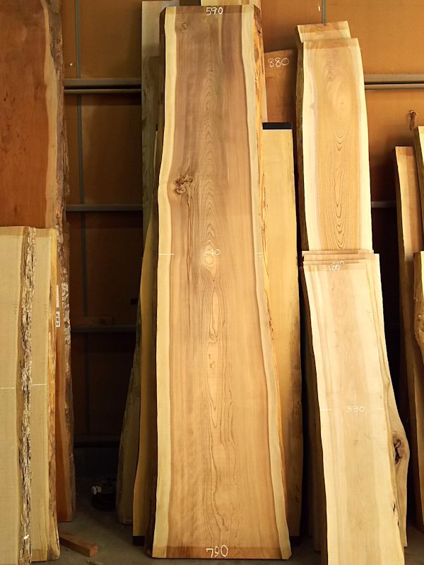 S-226 杉スギすぎ 国産 天然耳付き板 3400×650 天然乾燥材