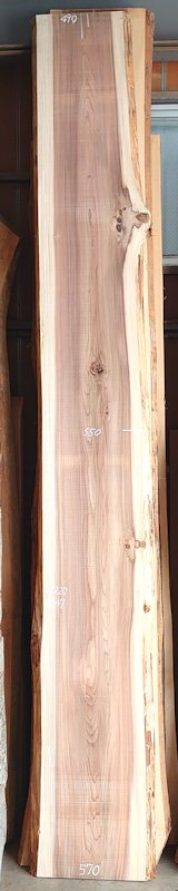 S-248 杉スギすぎ 国産 天然耳付き板 4720×600 天然乾燥材