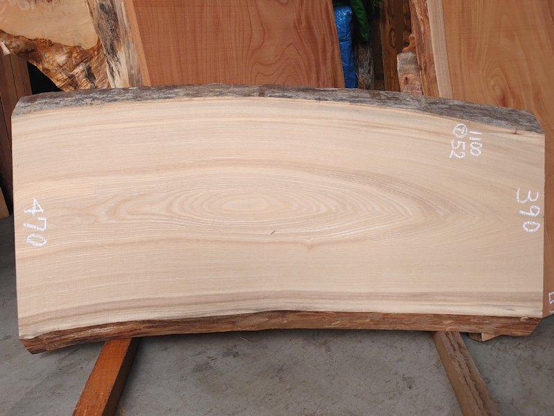 SN-126 栓センノキ 天然耳付き板 1100×550  天然乾燥材