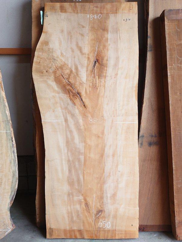 TT-205 栃トチノキ 国産 天然耳付き板 2180×850 天然乾燥材