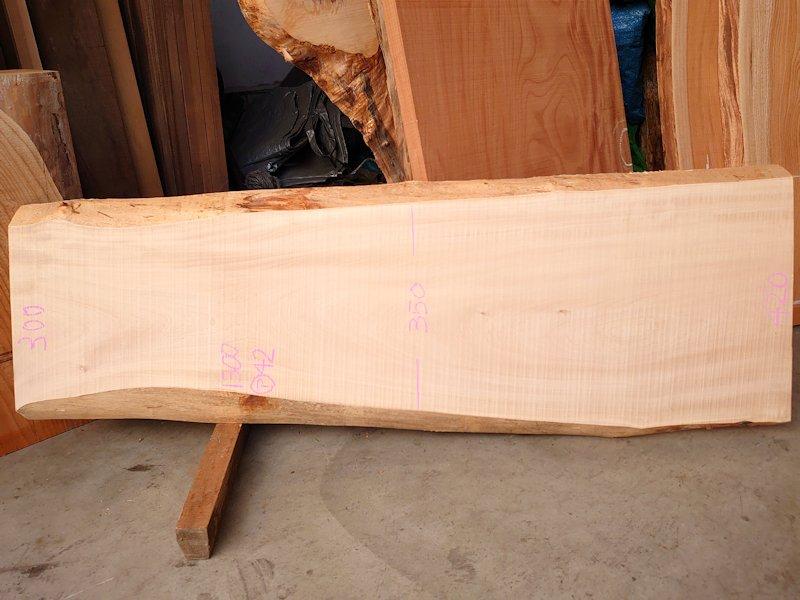 TT-211 栃トチノキ 国産 天然耳付き板 1300×450 天然乾燥材