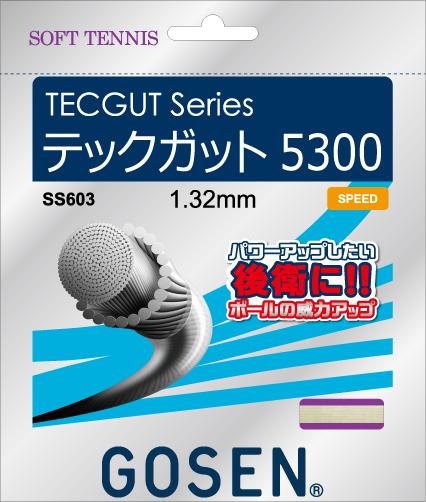 TECGUT5300 テックガット5300