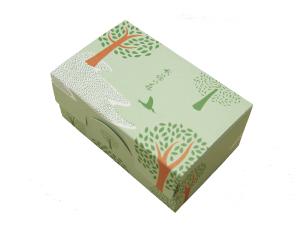 秋篠の森5個入箱_薄緑2