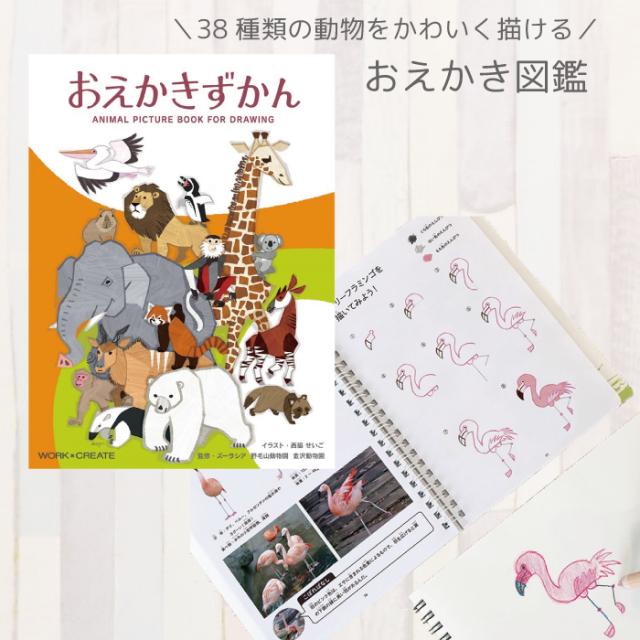 図鑑 絵本 お絵描き 38種類 動物 おえかきずかん 子供 プレゼント ギフト ネコポス可能 返品交換不可