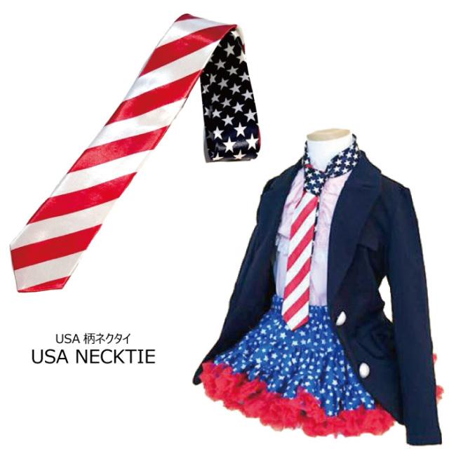 ダンス 衣装 ネクタイ アメリカ USA柄 ネクタイ 男女兼用 フリーサイズ 3個までならネコポス可能 [M便3/1]