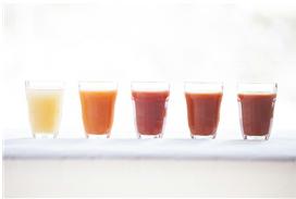 飛騨のジュース詰め合わせセット