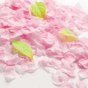 布製 さくら花びら