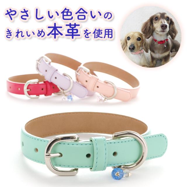 犬 首輪 CHA-1 革製 犬の首輪 小型犬首輪・中型犬首輪