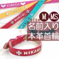 N-M  本革製イニシャル名入中型犬用犬首輪(レザー)