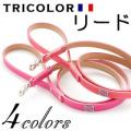 犬 リード 中型犬用 小型犬用 ファーストレーベルNo.4 鮮やか4色カラー
