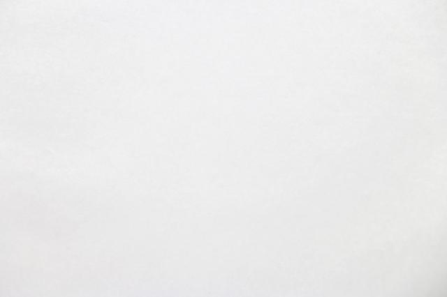 teshioランチョン【Snow White(スノーホワイト)ランチョンマット(200枚入り)】1枚単価58円