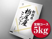 【定期便 100円OFF!】 新潟県栃尾産コシヒカリ5kg   ■ 令和元年産 ■