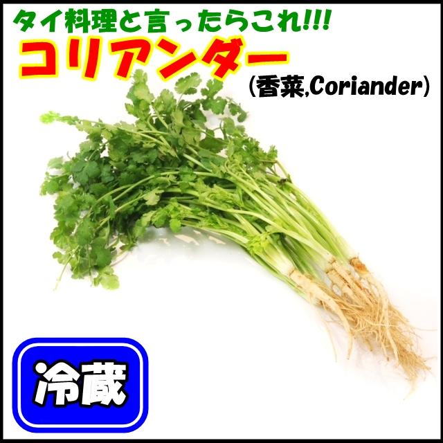 パクチータイ(コリアンダー、香菜)  【クール便(冷蔵)】