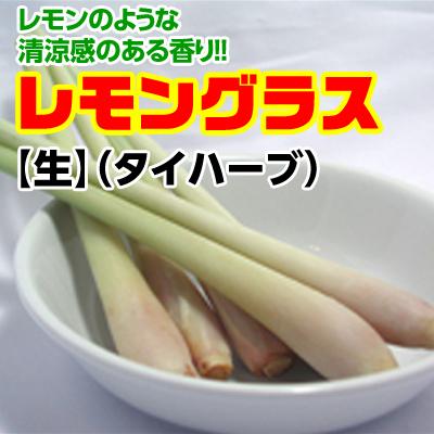 レモングラス(生)