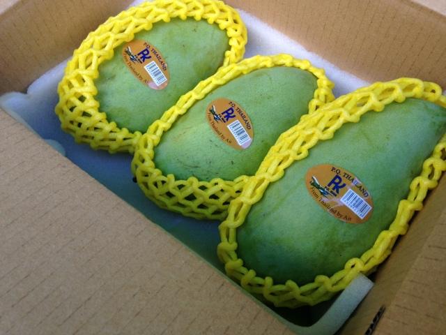 ナムドクマイGREEN(お野菜マンゴー) 約1.0Kg(Lサイズ 3個セット)