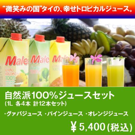【送料込み】Malee 100%フルーツジュースセット
