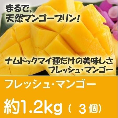 フレッシュ・マンゴー 約1.2Kg(2Lサイズ 3個セット)