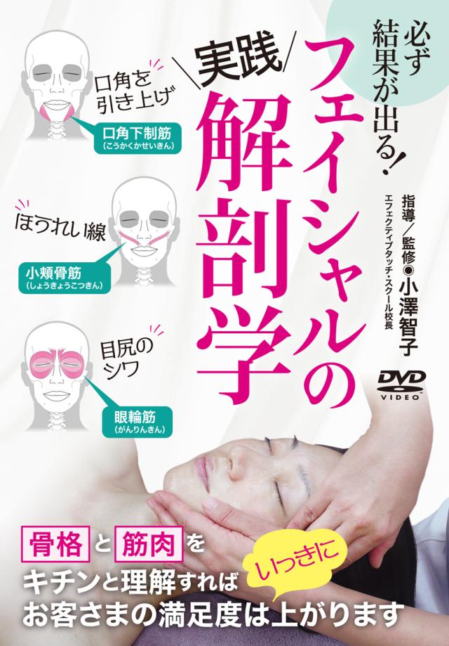 DVD フェイシャルの実践解剖学