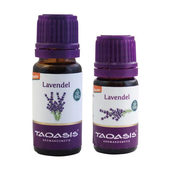 Lavandula officinalis (TAOASIS)