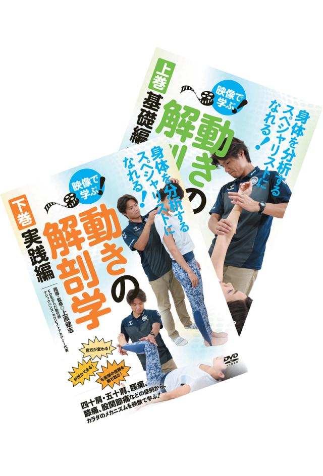 DVD 動きの解剖学 通販限定2巻セット