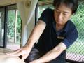 セミナー 「トリガーポイント療法」集中マスター(全3回)