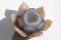 限定入荷!美しい仏陀のシンボル蓮の花の浄化カービング   2     /4月 パワーストーン・天然石