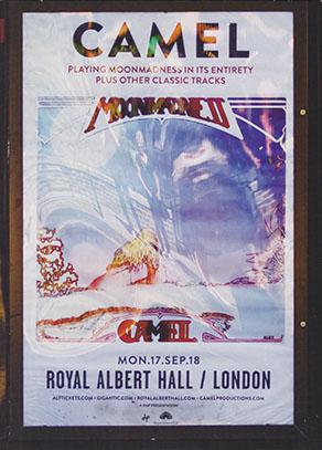 CAMEL/Live At The Royal Albert Hall(Blu-ray) (2018/Live) (キャメル/UK)
