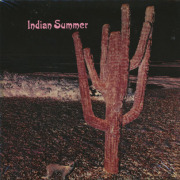 INDIAN SUMMER/Same (1971/only) (インディアン・サマー/UK)