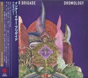 INNER EAR BRIGADE/Dromology(ドロモロジー) (2017/2nd) (インナー・イアー・ブリゲイド/USA)
