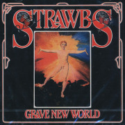 THE STRAWBS/Grave New World (1972/5th) (ストローブス/UK)