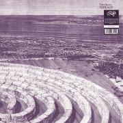 TIM STORY/Threads(LP) (1982/1st) (ティム・ストーリー/USA)