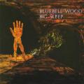 BIG SLEEP/Bluebell Wood (1971/only) (ビッグ・スリープ/UK)