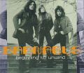 BARNABUS/Beginning To Unwind (1970-73/Comp.) (バルナバス/UK)