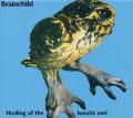 BRAINCHILD/Healing Of The Lunatic Owl (1970/only) (ブレインチャイルド/UK)