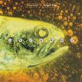 LARAAJI/ROGER ENO/Islands(Used CD) (1995/only) (ララージ/ロジャー・イーノ/USA,UK)